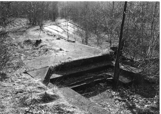 Ruiny koupaliště v Radvanicích