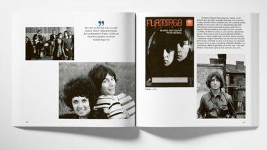Kniha Od Flaminga k Plameňákům je cenným dokumentem o významné kapitole české pop music